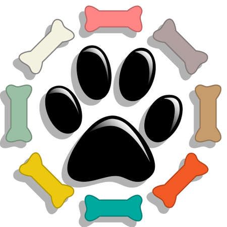 dog food: Dog food