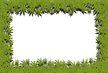 hoja marihuana: Marco de marihuana Foto de archivo