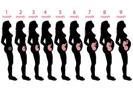 pregnant black woman: Pregnant woman