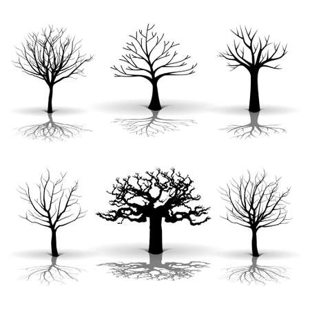 tree silhouette: A set of tree Illustration