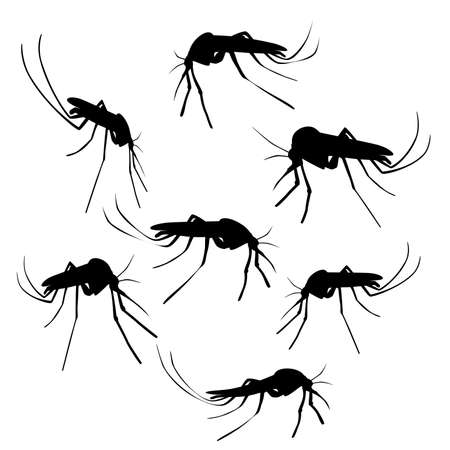 Silhouettes of mosquitoes.Illustration of a mosquito silhouette on a white background