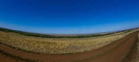 Boundless steppes with the horizon in the distance, somewhere you can see the planted forest.