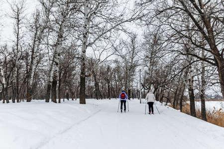 Winterlandschap met langlaufloipes, winterbos