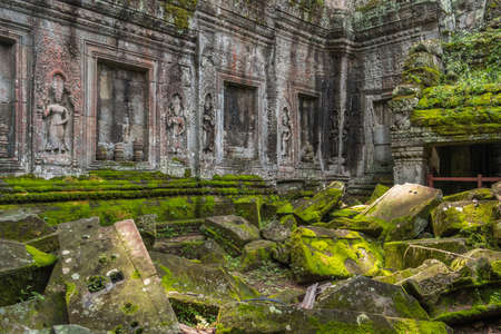 Ta Prohm temple in Angkor, Siem Reap, Cambodia. Stock Photo