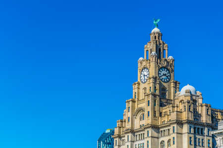 The royal liver building in Liverpool, England   Editorial
