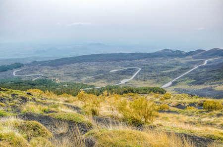 wild vegetation flourishing on slope of mount etna in Sicily, Italy 写真素材