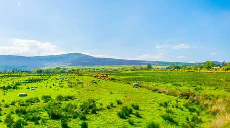 Irish countryside near Glendalough Stock Photo