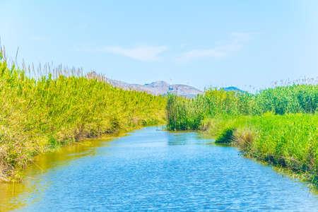 Marismas del parque nacional de la Albufera en Mallorca, España