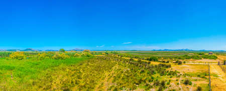 Marshes of Albufera national park at Mallorca, Spain