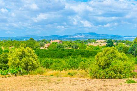 Countryside of Mallorca