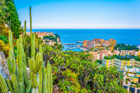 Aerial view of the old town of Monaco and port de fontvieille from jardin exotique botanical garden