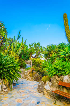 Jardin Exotique garden in Monaco