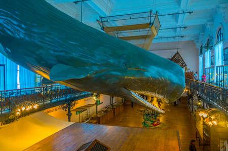 MONACO, MONACO, JUNE 14, 2017: View of interior of Musée océanographique de Monaco
