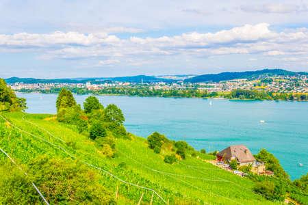 Vineyards surrounding Bielersee in Switzerland Stock Photo