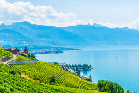 Lavaux wine region near Lausanne, Switzerland Stock fotó - 117279229