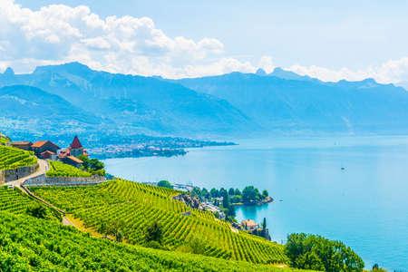 Weinregion Lavaux bei Lausanne, Schweiz