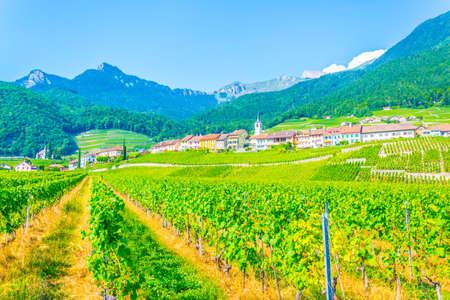 View of Yvorne village in Switzerland Imagens