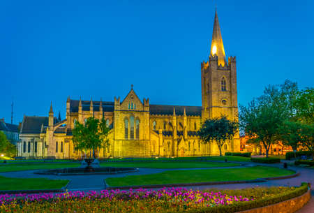 Night view of the St. Patricks Cathedral in Dublin, Ireland Фото со стока