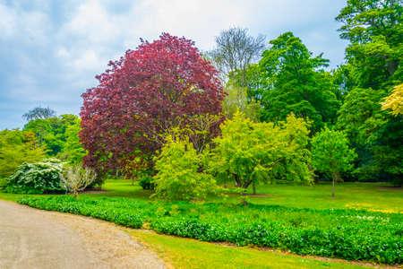 Malahide gardens in Ireland Reklamní fotografie - 121042116