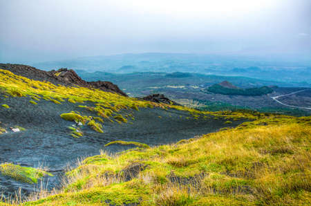 wild vegetation flourishing on slope of mount etna in Sicily, Italy