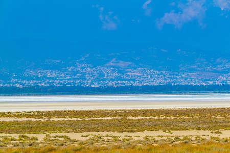 Limassol viewed behind akrotiri salt lake on Cyprus
