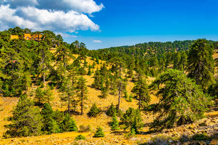Troodos mountains on Cyprus 版權商用圖片