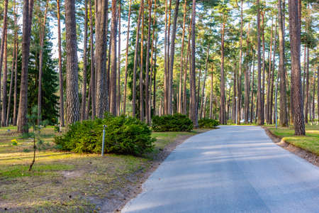 Path at the Skogskyrkogarden, Unesco-listed cemetery, in Stockholm, Sweden