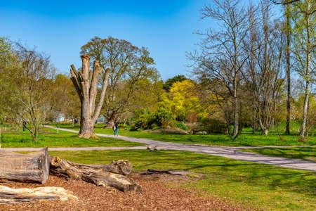 Botanical garden in swedish town Lund