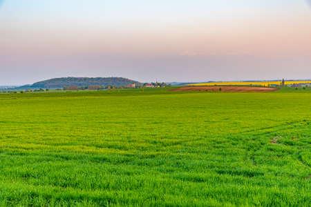 Sunset over green field in the czech republic