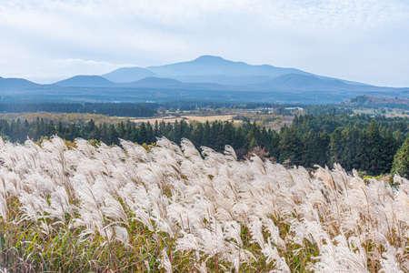 Hallasan mountain viewed from Sangumburi crater at Jeju island, Republic of Korea