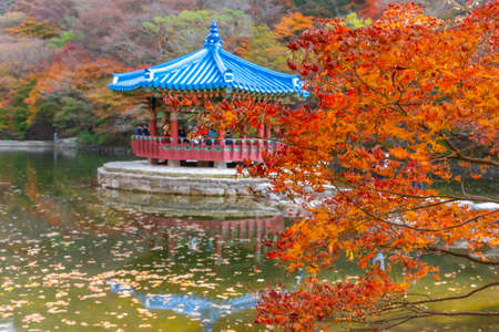 Blue pavilion situated on a pond in Naejangsan national park in republik of Korea