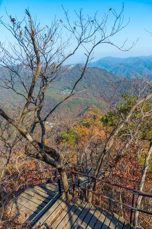 Staircase at Naejangsan national park in republic of Korea