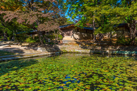Wooden pavilion at Aeryeonji pond inside secret garden of Changdeokgung palace in Seoul, Republic of Korea