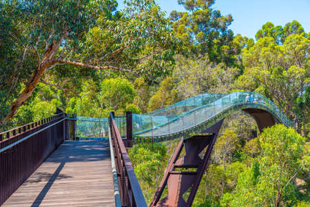 Federation Walkway at Kings park and botanic garden in Perth, Australia Stock Photo