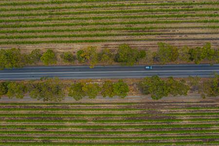 Aerial view of vineyards at McLaren Vale in Australia Stock Photo