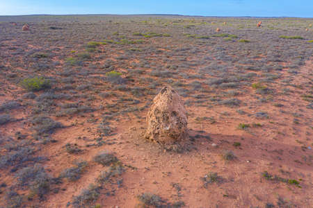 Termite nest near Exmouth, Australia Stock Photo