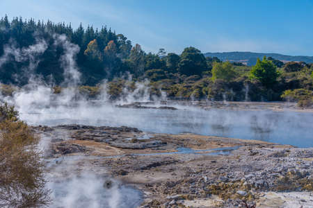 Hell's Gate Geothermal Reserve in New Zealand