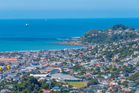Aerial view of suburb of Wellington in New Zealand
