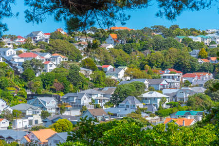Residential houses in Wellington, New Zealand Stockfoto