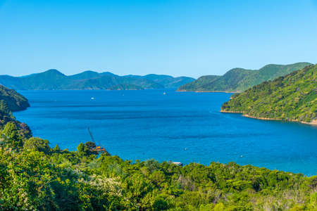 Grove arm of Queen Charlotte sound at South Island of New Zeland