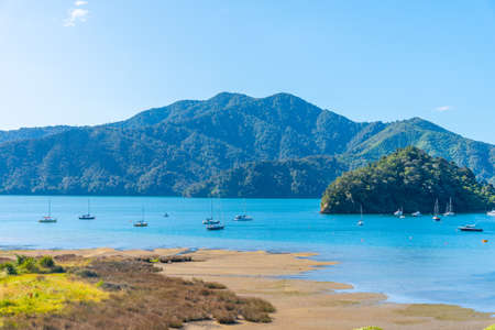 Ngakuta bay at Queen Charlotte sound at South Island of New Zeland