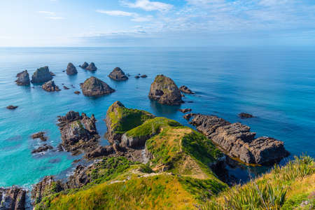 The nuggets - rocky islets at Nugget point in New Zealand