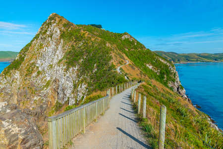 Nugget point in New Zealand Stock fotó