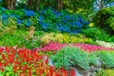 Botanical garden at Villa Carlotta at Tremezzo, Italy