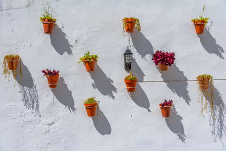 flower pots hanging on a white wall at arcos de la Frontera in Spain
