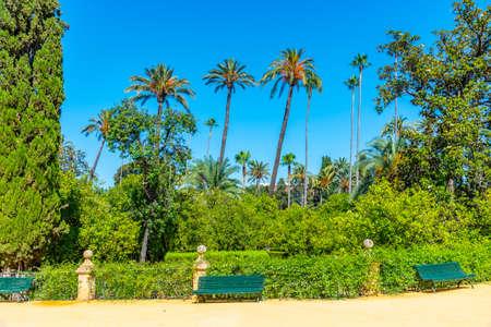 Gardens of Real Alcazar de Sevilla in Spain
