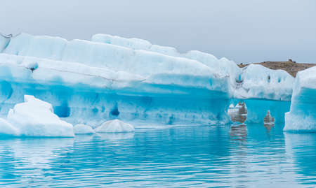 Floating icebergs at Jokulsarlon lagoon on Iceland