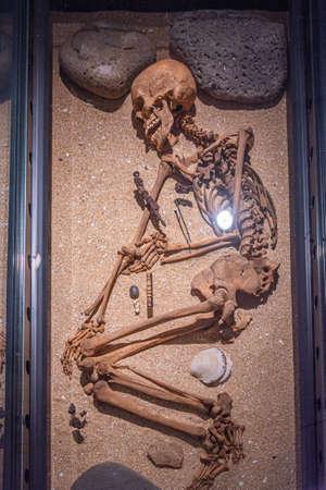 Reykjavik, Iceland, August 30, 2020: Human skeleton at the national museum of Iceland in Reykjavik