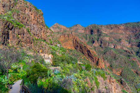 Barranco de Guayadeque valley at Gran Canaria, Canary islands, Spain. Imagens