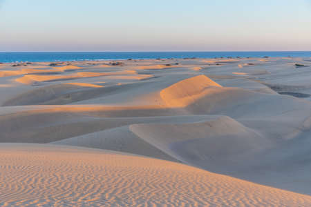 Sunset over sand dunes at Maspalomas, Gran Canaria, Canary Islands, Spain. Reklamní fotografie